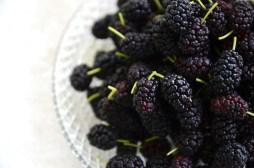 mulberry-superdiet