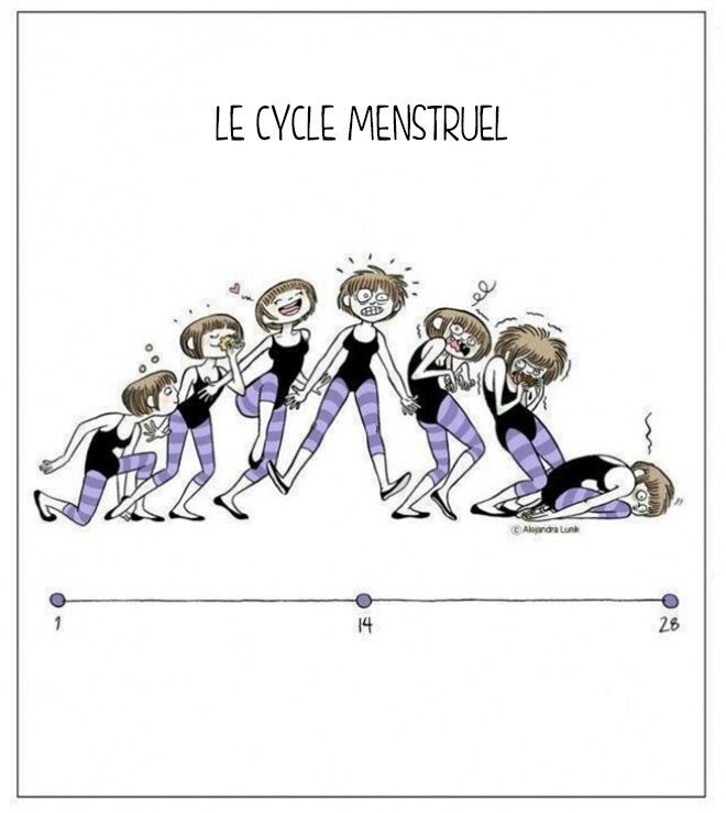 cycle_menstruel
