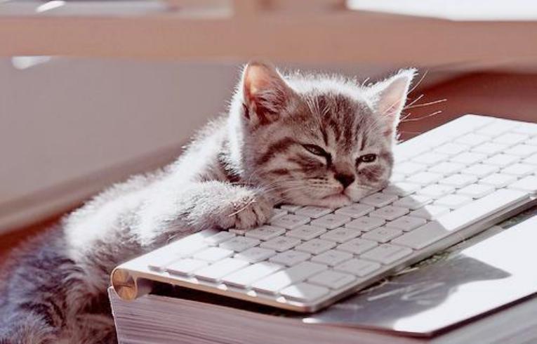 Bore_job.jpg